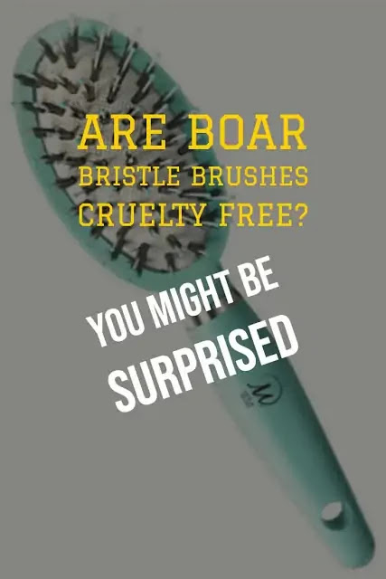 Are boar bristle brushes cruelty free? You might be surprised.